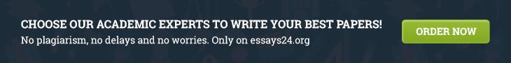 essay24